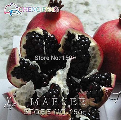Shopmeeko heißer verkauf 20 teile/beutel Riesengranatapfel pflanzen hause anlage bonsai baum Köstliche obst pflanzen sehr groß und süß für hausgarten pla: klar