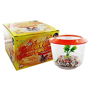 Goldfish Starter Set Aquarium Gold Fish Bowl Complete With Tank Gravel and Plant Kit