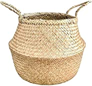 Natural Craft Large Size Seagrass Belly Basket for Storage, Laundry, Picnic and Woven Straw Beach Bag - Plant