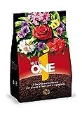ONE Concime granulare per Piante e Fiori, 1 kg