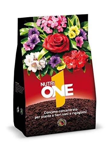NUTRI 1 ONE One Concime granulare per Piante e Fiori, 1 kg