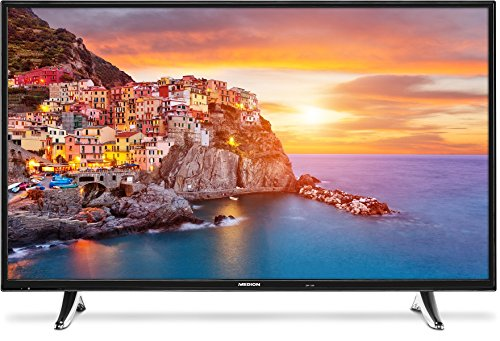 Medion P18072 MD 31093 123,2 cm (49 Zoll Full HD) Fernseher (LED-Backlight TV, Full HD, 1920 x 1080 Pixel, HD Triple Tuner, DVB-T2 HD/C/S2, 600CMP, Netflix App, integrierter Mediaplayer) schwarz
