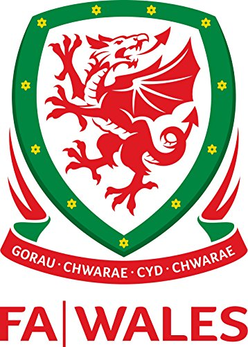 Wales Football Team FA - Crest Logo Wall Poster Print - UEFA Euro 2016-43cm x 61cm / 17 Inches x 24 Inches A2 -