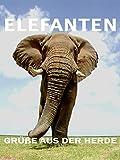 Elefanten - Grüße aus der Herde
