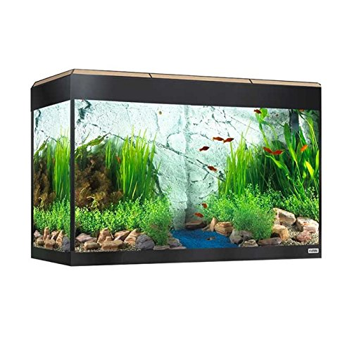 Fluval acaurio Rom-Kit mit LED-Beleuchtung - Aquarium-125 L Set