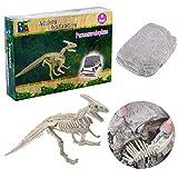 BANDRA Dinosaurier Fossil Dig Kit Archäologie Ausgrabungs-Kits für Kinder...