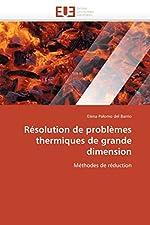 Résolution de problèmes thermiques de grande dimension de Elena Palomo del Barrio