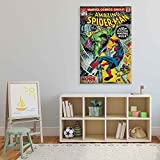 Marvel Spiderman VS Hulk Leinwand Bilder (PPD1686O1FW)