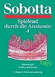 Spielend durch die Anatomie, Lernkarten, Tl.4, Histologie, 146 Lernkarten