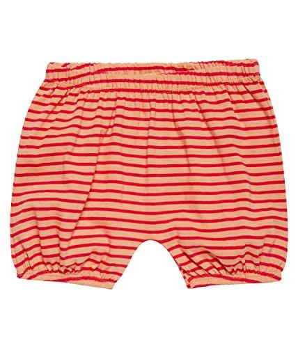 Sense Organics Baby-Mädchen Maya Bloomer Shorts, Mehrfarbig (Peach Rose Red Stripes 393000), 74 (Herstellergröße: 6M)
