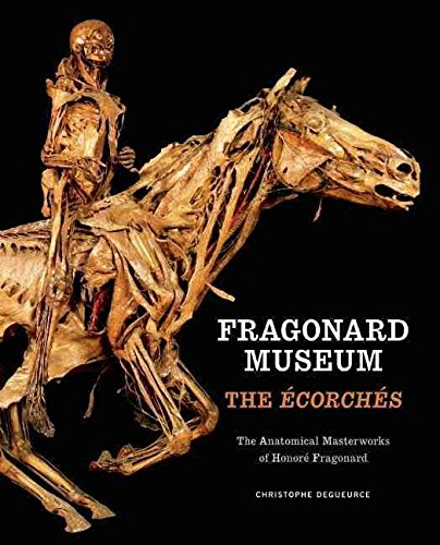[Fragonard Museum: The Ecorches] (By: Christophe Degueurce) [published: April, 2011]