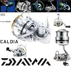 DAIWA - Moulinet CALDIA - 2500