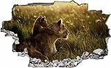 DesFoli Löwe Löwin Lion 3D Look Wandtattoo 70 x 115 cm Wanddurchbruch Wandbild Sticker Aufkleber C080