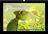 Das Jemenchamäleon (Wandkalender 2018 DIN A3 quer): Ein kleiner Drache stellt sich vor (Monatskalender, 14 Seiten ) (CALVENDO Tiere) [Kalender] [Apr 01, 2017] Düll, Sigrun