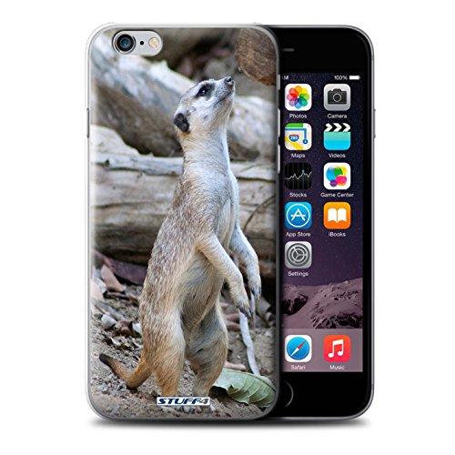 Stuff4 Hülle / Case für Apple iPhone SE / Faultier Muster / Wilde Tiere Kollektion Erdmännchen
