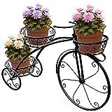 Dreirad-Pflanz Ständer-Blumentopf-Wagen Halter-Ideal Für Zu Hause, Garten, Terrasse-Großes Geschenk Für Pflanzenliebhaber, Pariser Stil,Black