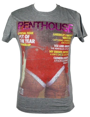 Jack & Jones Penthouse T-Shirt Shirt Gr. S-XL Grau