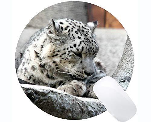 Antibeleg-Mäusematte für Desktops, Zoogestiertierschlafen besonders angefertigt Runde Mausunterlage