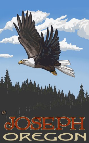 Northwest Art Mall Joseph Oregon Eagle Soaring Forest Kunstdruck, ungerahmt, 28 x 43 cm -