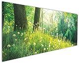 Wallario Küchenrückwand aus Glas, in Premium Qualität, Motiv: Pusteblumen im Wald mit einfallenden Sonnenstrahlen | Spritzschutz | abwischbar | Pflegeleicht