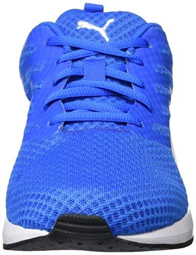 Puma Flare Mesh, Chaussures de Running Compétition Homme Bleu - Blau (Electric Blue lemonade-puma White 04)
