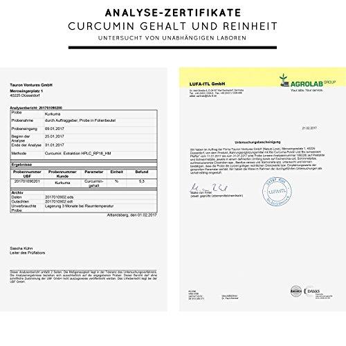Bio Curcuma (Kurkuma) Kapseln mit 3000 mg pro Tagesdosis – 180 Stück im Monatsvorrat. Zertifiziert Bio. Mit Piperin aus Bio schwarzem Pfeffer. Frei von Zusatzstoffen wie Gelatine oder Magnesiumstearat. Laborgeprüft, mit von Natur aus hohem Curcumin Gehalt. Hochdosiert, vegan und hergestellt in Deutschland - 5