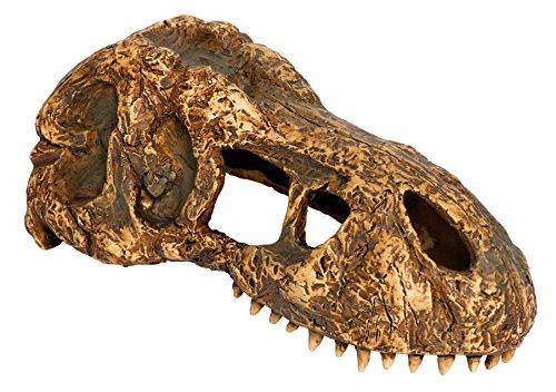 Exoterra T-Rex Skull Décoration pour Reptile/Amphibien Taille S
