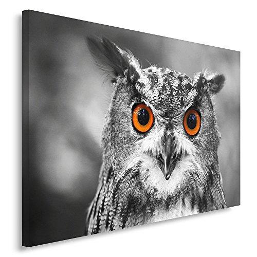 Feeby Frames, Quadro pannelli, Pannello singolo, Quadro su tela, Stampa artistica, Canvas 40x50 cm, GUFO, GUFO, ANIMALI, BOSCO, NATURA, OCCHI,