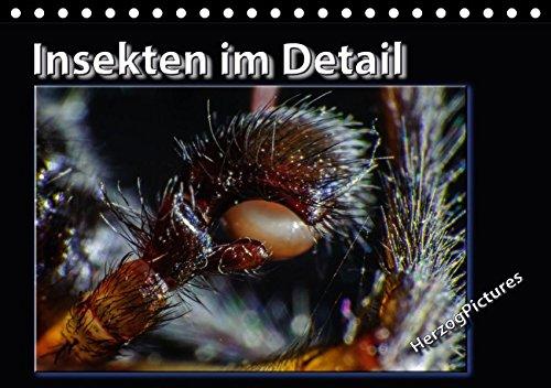 insekten-im-detail-tischkalender-2017-din-a5-quer-nahe-magie-der-insekten-im-detail-betrachtet-monat