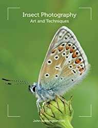 Insect Photography: Art and Techniques
