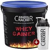 Whey Gainer Protein, 100% reiner Hardgainer, 3000g Eimer, Plätzchen oder Erdbeer Eiweißpulver + Shaker (3Kg Plätzchen)