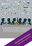 Vergleichende Kompetenzanalyse und strategische Kompetenzentwicklung: Unternehmen in Baden-Württemberg im Wandel von Märkten und Arbeitswelten (Steinbeis Consulting Studie)