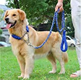 MK Hundeleine und Halsband/Pet Training Bleihalsband/Anti-Pull-Anti-Biss Hundeleine und Halsband (S(250mm-350mm), Blau)