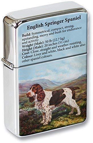English Springer Spaniel Klappfeuerzeug in einer Geschenkdose