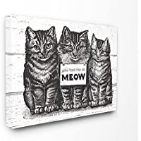 Stupell Industries Meow Cats Oversized Stretched Canvas Wall Art, Proudly Made in USA, Multicolour, 60.96 x 3.81 x 76.2 cm preiswert