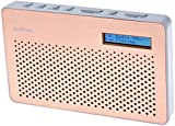 Goodmans Portable Digital & FM Radio in Copper
