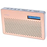 Goodmans Portable Digital & FM Radio in Copper