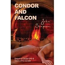 Condor and Falcon (Condor One Series Book 3) (English Edition)