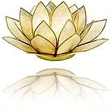 Lotus Porte-bougie photophore en nacre de coquillages Capiz en différents coloris Ø 13,5cm Lotus Chakra Feng Shui, Beige smoked Gold