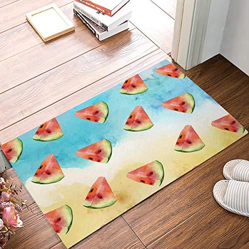 Miedhki Hand Painted Watermelon Watercolor Summer Doormat Entrance Mat Floor Mat Rug Indoor/Outdoor/Front Door/Bathroom Mats Rubber Non Slip (15.7X23.6,L x W) -