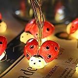 Ladybird String Light, EONHUAYU Marienkäfer String Light Beetle String Licht 2 Mt 20LED Insekt Outdoor String Licht Batterie für Outdoor Garten Sommer Party Hochzeit Weihnachten Dekoration (Warmweiß)