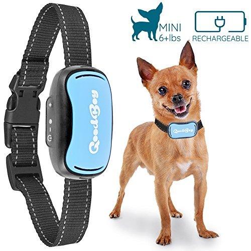GoodBoy Mini Vibrationshalsband für kleine Hunde - wiederaufladbar und wasserdicht Kontrolle von übermäßigen Bellen mit diesem einfachen und effektiven Antibell Halsband für kleine und mittlere Hunde ab 2,5kg und 12cm-48cm Halsumfang Sicher und human ohne Shock