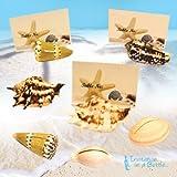 Seashell Place Card Holders (Natural Sea...