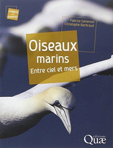 Oiseaux marins : Entre ciels et mers