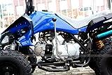 ATV Quad Carbon 125ccm Pocket Bike - 3