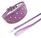 25,4–30,5cm lila Italienisches Windspiel Leder Halsband mit Naht Design Set Passende Leine