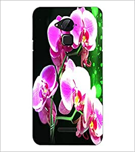 PrintDhaba Flowers D-3885 Back Case Cover for COOLPAD NOTE 3 LITE (Multi-Coloured)