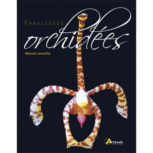 Fabuleuses orchidées
