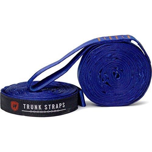 grand-trunk-tree-trunk-hammock-straps-blue