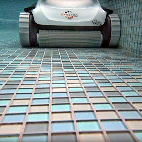 Maytronics Dolphin PoolStyle Plus - Robot limpiafondos para Piscinas (Fondo y Paredes)